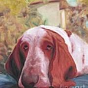 Dog's Portrait No 1 Art Print