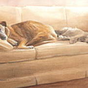 Dogs Sleeping On Couch Watercolor Portrait Art Print