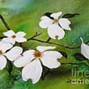 Dogwood Blossoms Art Print