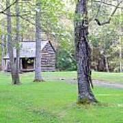 Dogwood Cabin Art Print