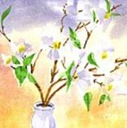 Dogwood In Watercolor Art Print