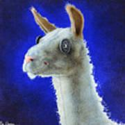 Dolly Llama... Art Print