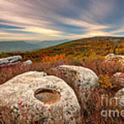 Dolly Sods Wilderness D30019870 Art Print