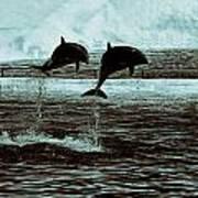 Dolphin Pair-in The Air Art Print