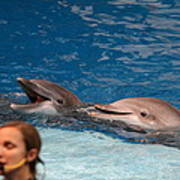 Dolphin Show - National Aquarium In Baltimore Md - 1212177 Art Print