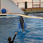 Dolphin Show - National Aquarium In Baltimore Md - 121239 Art Print by DC Photographer