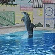 Dolphin Walking On Water Digital Art Art Print