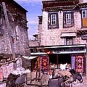 Donkeys In Jokhang Bazaar Art Print