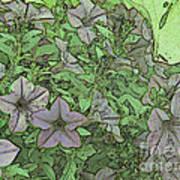 Donovan's  Garden Art Print by Mark Herman