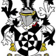 Doolan Coat Of Arms Irish Art Print