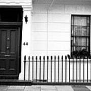 Door Window And Fence Art Print