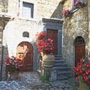 Doors In Bagnoregio Art Print