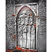 Doorway In Cork Art Print by Maeve O Connell