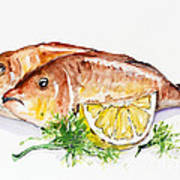 Dorado Fish Art Print