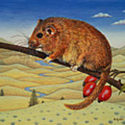 Dormouse Number Two, 1994 Art Print