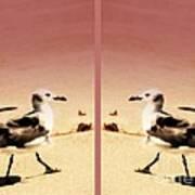 Double Gulls Collage Art Print