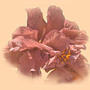 Double Hibiscus Portrait Art Print