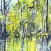 Down On The Bayou Art Print