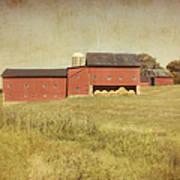 Down On The Farm Art Print by Kim Hojnacki