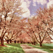 Down The Cherry Lined Lane Art Print