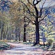Down The Lane Art Print