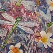Dragonflies And Daisies Art Print