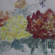 Dragonfly Among Chrysanthemums Art Print