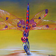 Dragonfly Colors Art Print