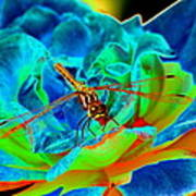 Dragonfly On A Cosmic Rose Art Print