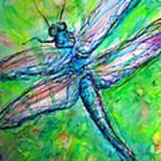 Dragonfly Spring Art Print by M C Sturman