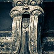 Drainage Ornament On Hindu Seetha Amman Temple In City Seetha Eliya Art Print
