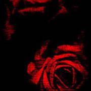 Dread Roses Art Print