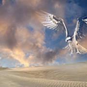 Dream Hawk Art Print
