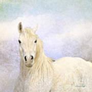 Dream Horse Art Print
