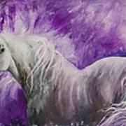 Dream Stallion Art Print