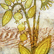 Dreaming Grass Art Print