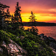 Dreaming Of Acadia Art Print