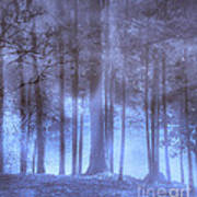 Dreamy Forest Art Print