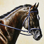 Dressage Horse - Concentration Print by Crista Forest