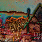 Dried And Growing From A Painted Rock Art Print