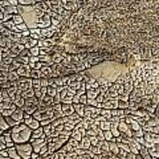 Dried Mud Pan It Time Of Drought Art Print