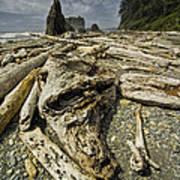 Driftwood And Sea Stacks On Ruby Beach Art Print