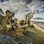 Driftwood On Rialto Beach Art Print