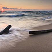 Driftwood On The Beach Art Print by Adam Romanowicz