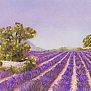 Drome Provence Art Print
