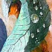 Drops On A Leaf Print by Daniel Janda