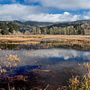 Dry Lagoon In Winter Panorama Art Print