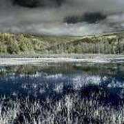 Dry Lagoon Winter Art Print