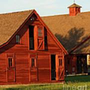 Dual Barns-3811 Art Print