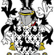 Duane Coat Of Arms Irish Art Print